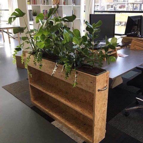 rood-bloem-styling-kantoor-groen-planten-utrecht-2