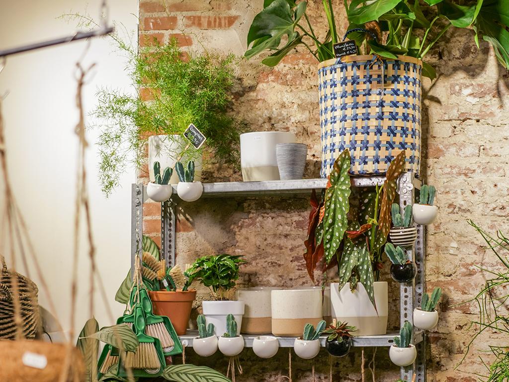 rood-bloem-utrecht-winkel-groen-planten-workshops-woon-accessoires-styling-springweg-5